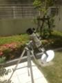 金星の日面通過(望遠鏡)