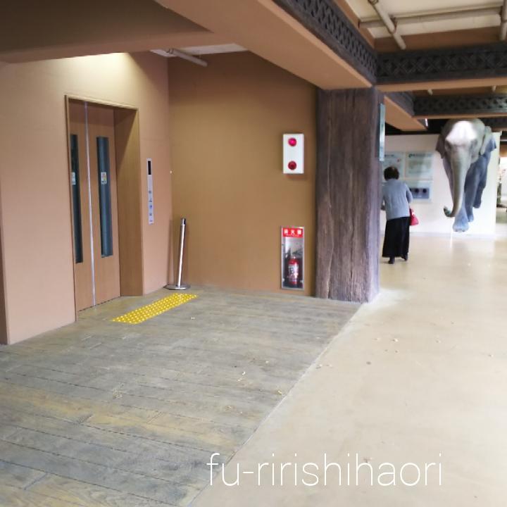 東山動植物園のゾウ舎一階にある、二階へ通じるエレベーター