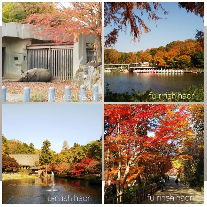 東山動植物園の紅葉の様子