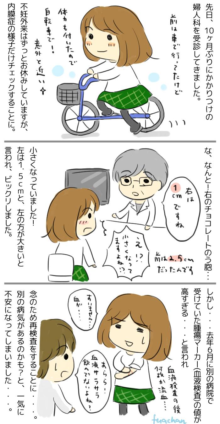 f:id:fuachan:20170423173810j:plain