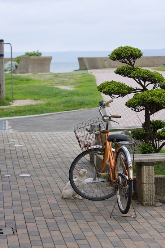 f:id:fubirai:20080910231253j:image