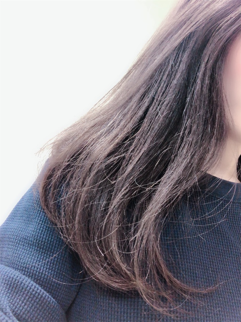 f:id:fuchigami_makip:20190510224825j:image