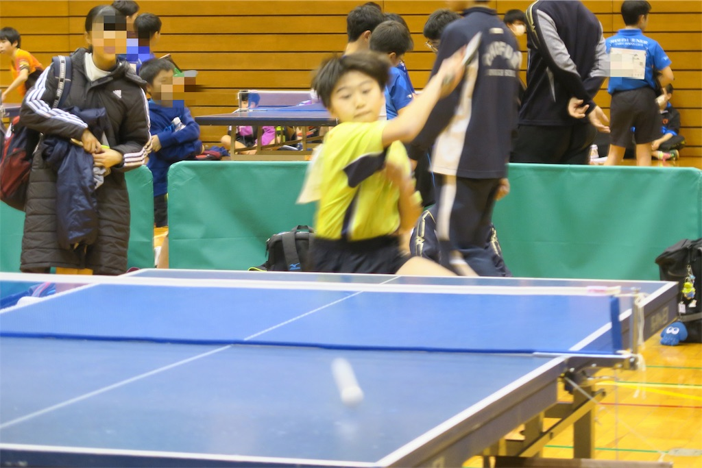f:id:fuchukirara:20190204204236j:image