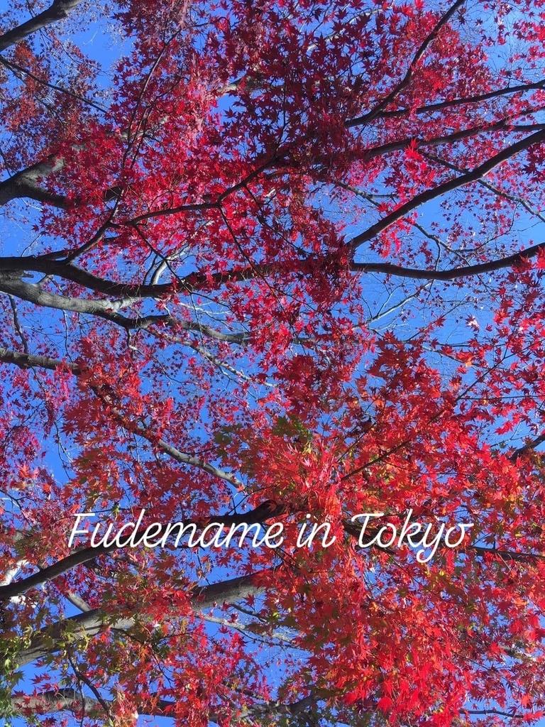 f:id:fudemameintokyo:20181222093907j:plain