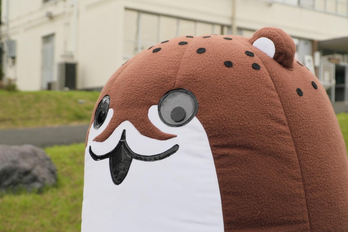 f:id:fudsuki:20191006211454j:plain