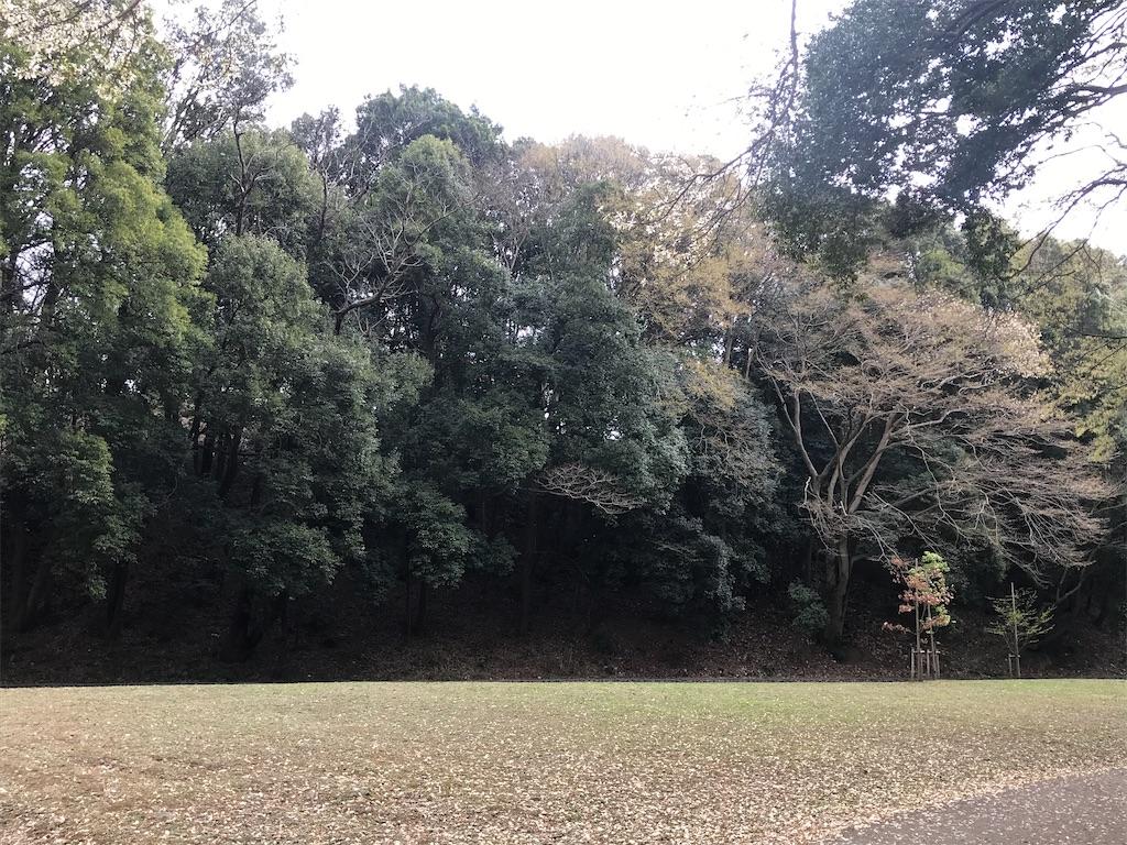 f:id:fufumama:20210322091052j:image