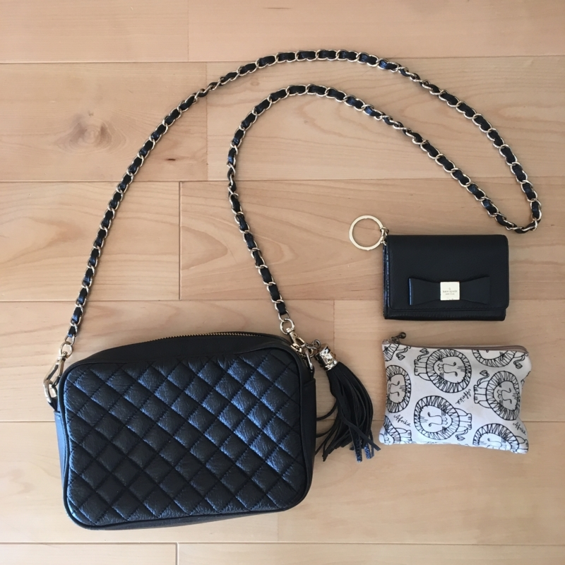 女ミニマリストの小さい財布