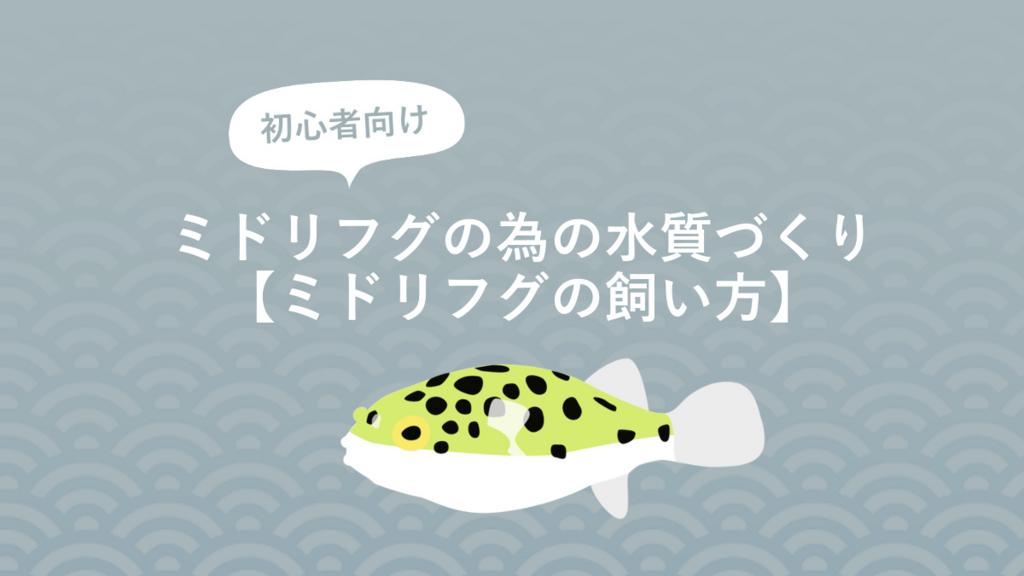 f:id:fugu-ya:20170826155115j:plain