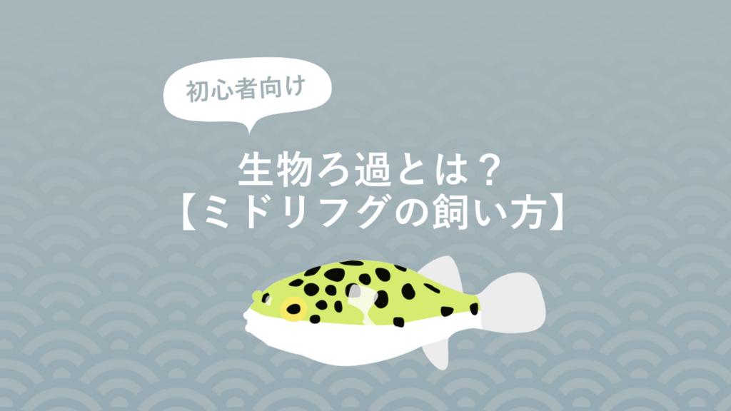 f:id:fugu-ya:20170826155651j:plain