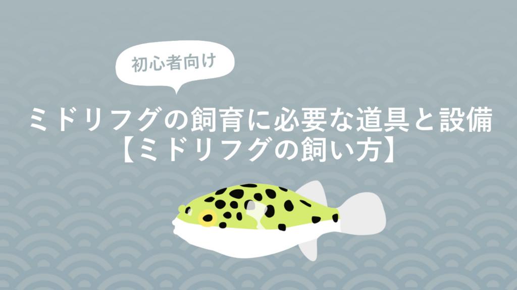 f:id:fugu-ya:20170826161014j:plain