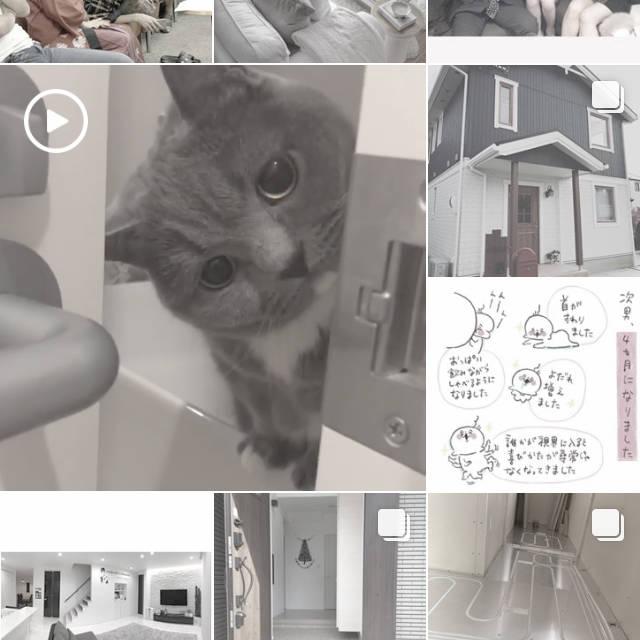f:id:fugu-ya:20171116205803j:plain