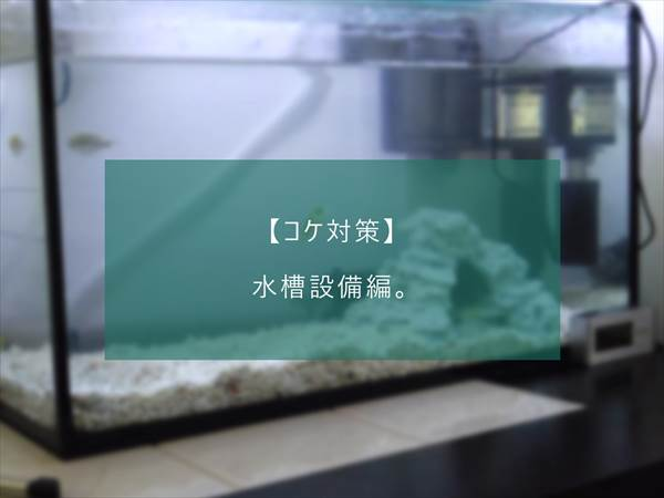 f:id:fugu-ya:20171124154412j:plain