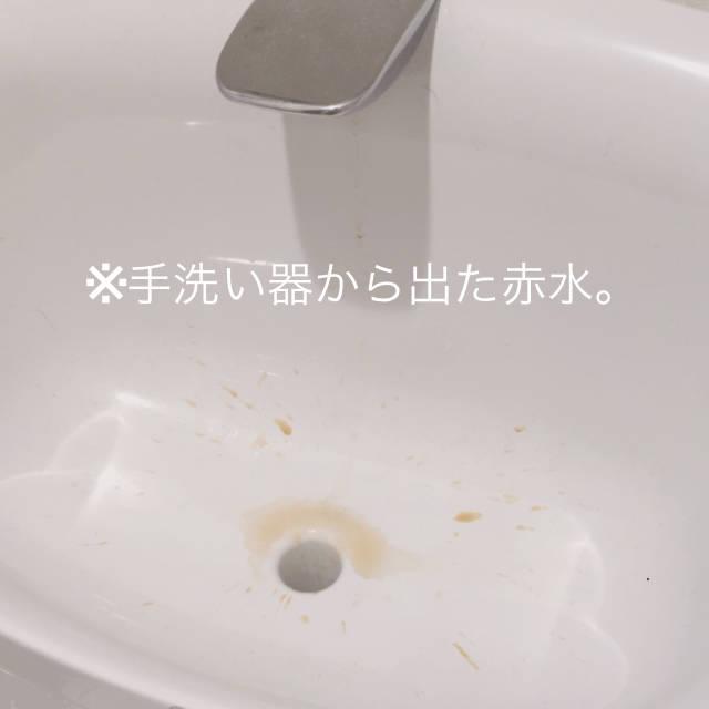 f:id:fugu-ya:20180410144350j:plain