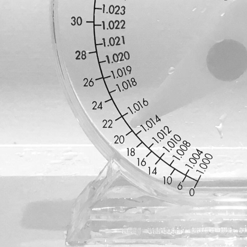 ミドリフグの飼育適した半海水の塩分濃度
