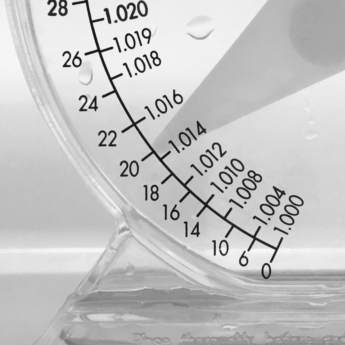 ミドリフグの飼育に適した塩分濃度
