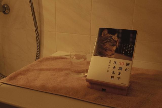 リラックスしたい入浴時間は脱衣室の照明で十分