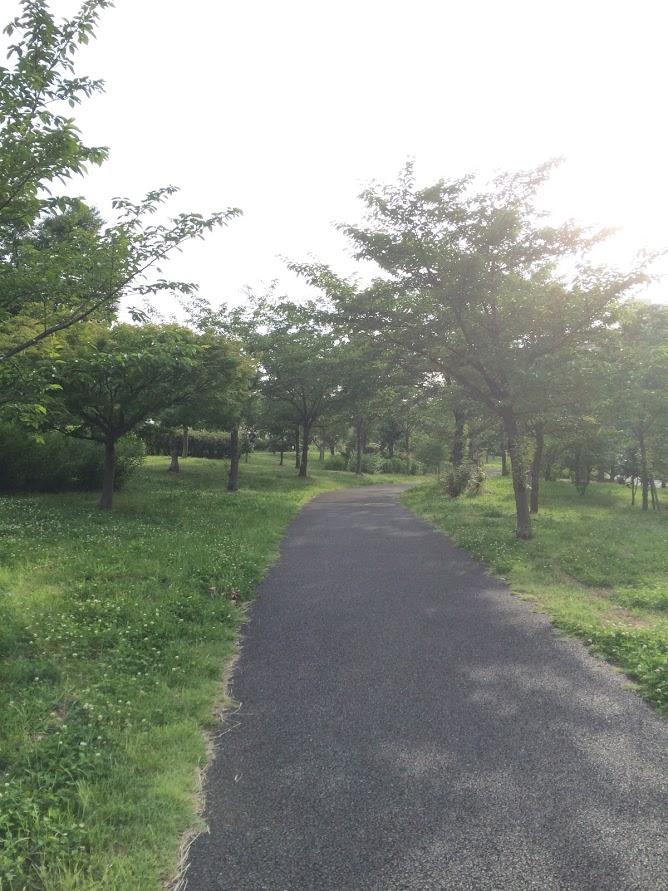 f:id:fugufugufugu:20160615230606j:plain