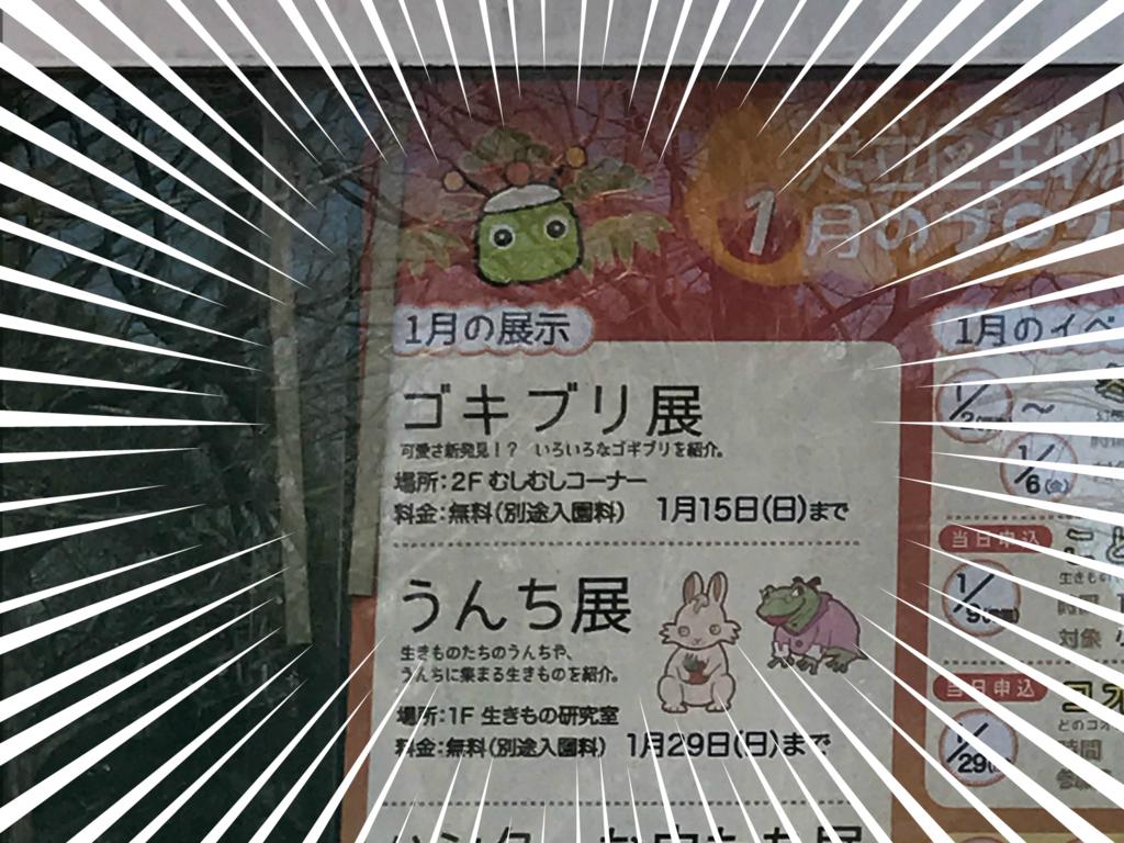 f:id:fugufugufugu:20170103213552j:plain