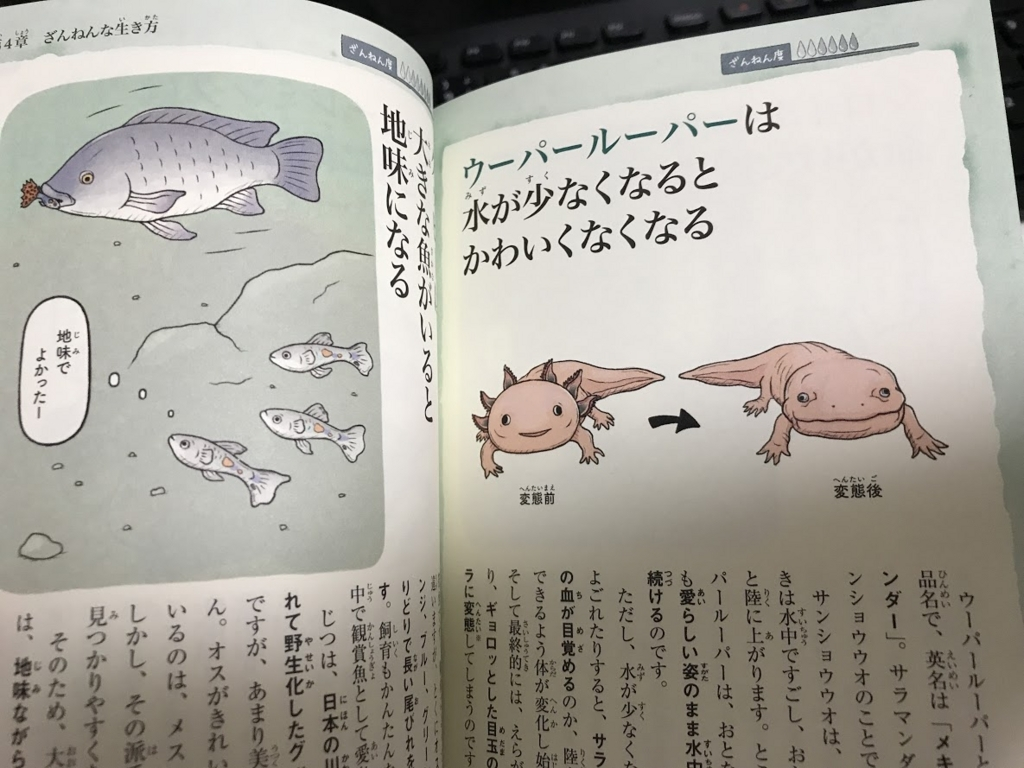 f:id:fugufugufugu:20170621235913j:plain