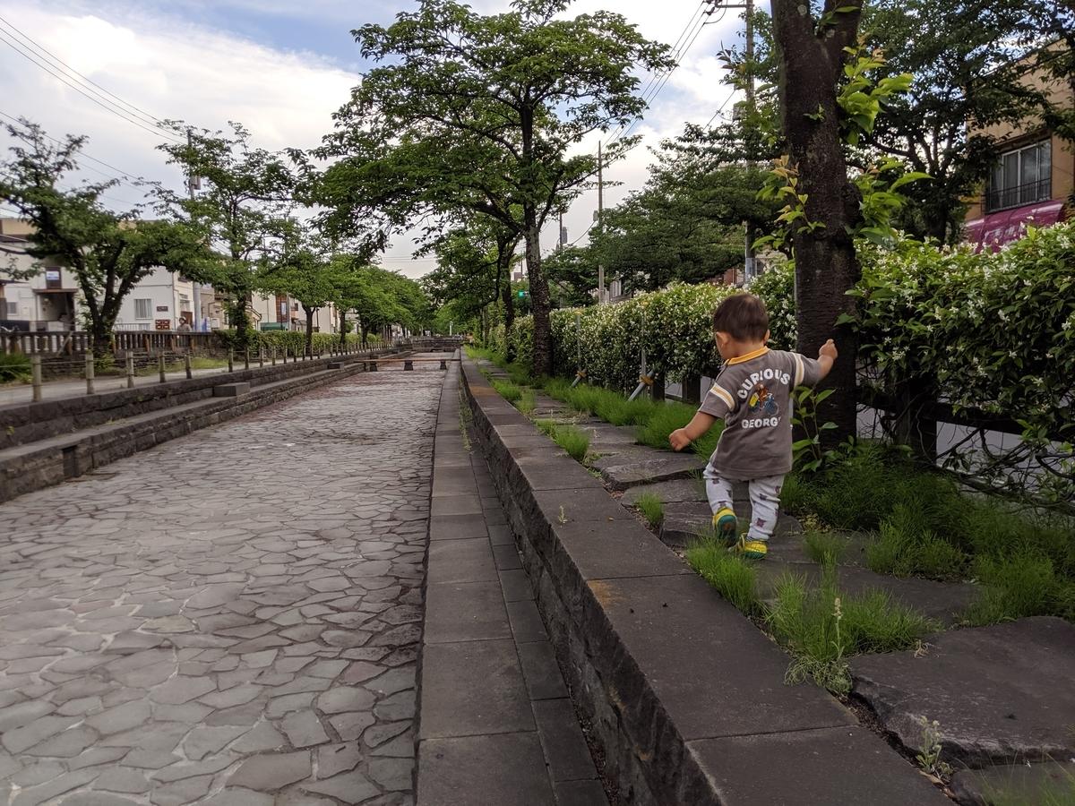 f:id:fugufugufugu:20190603233123j:plain