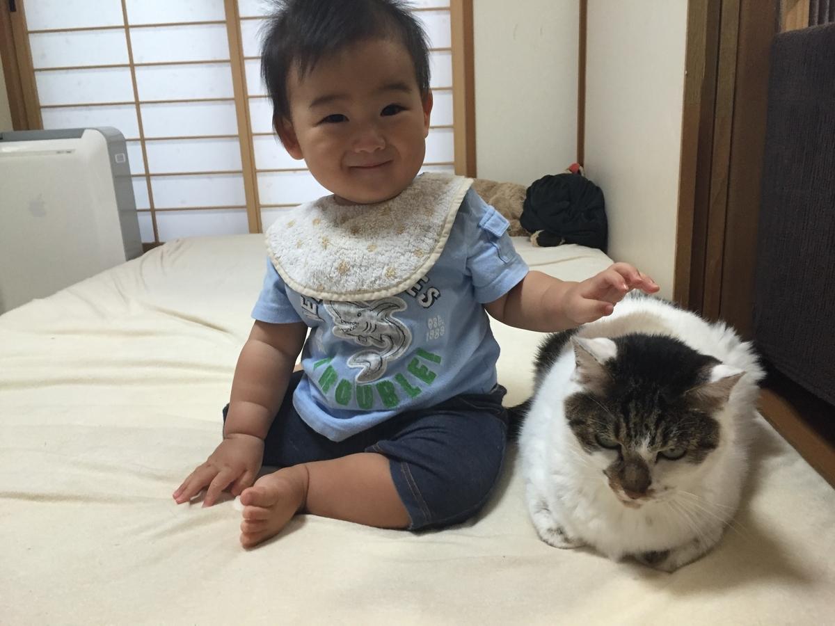 f:id:fugufugufugu:20190713001656j:plain