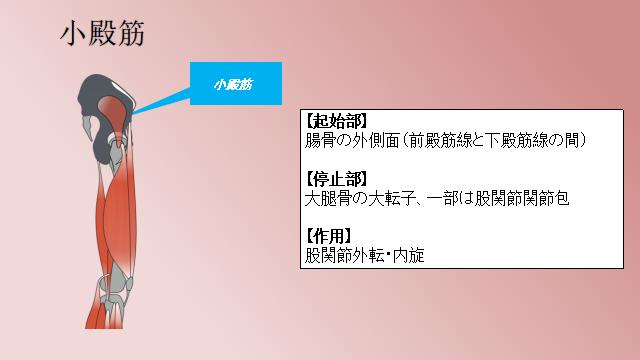 f:id:fuji-riha:20191012215156p:plain
