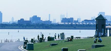 葛西臨海公園芝生広場