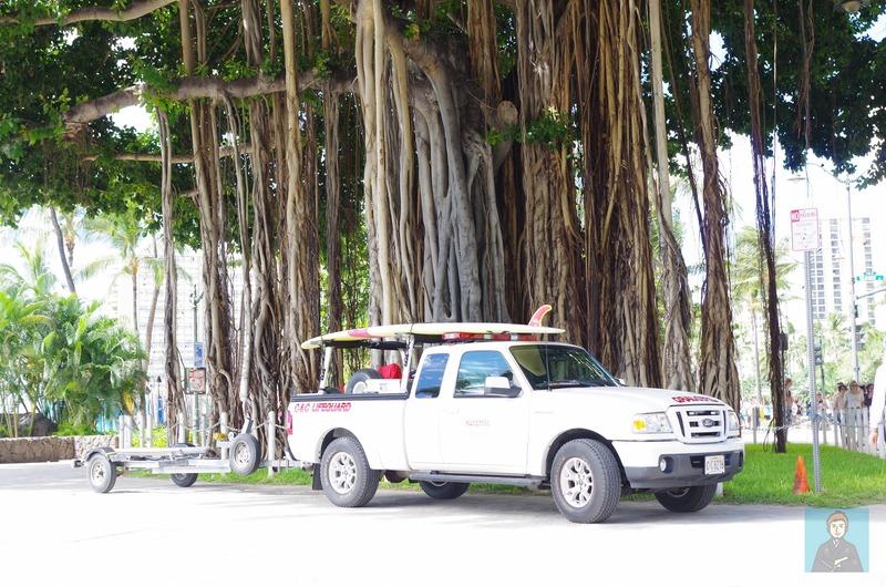 ハワイビーチ-4593
