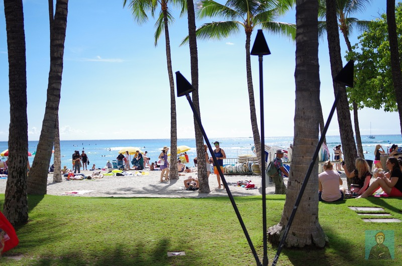 ハワイビーチ-4089