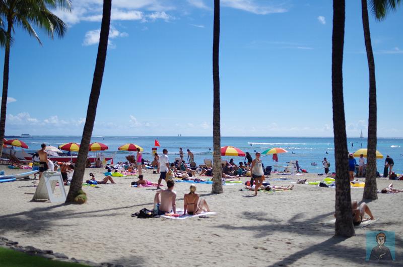 ハワイビーチ-4081