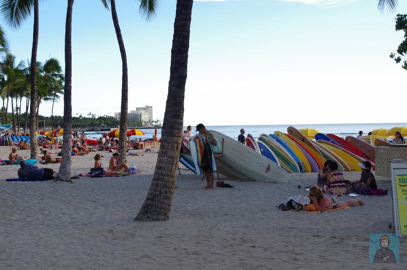 ハワイビーチ-4353