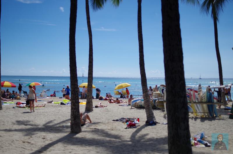 ハワイビーチ-4082
