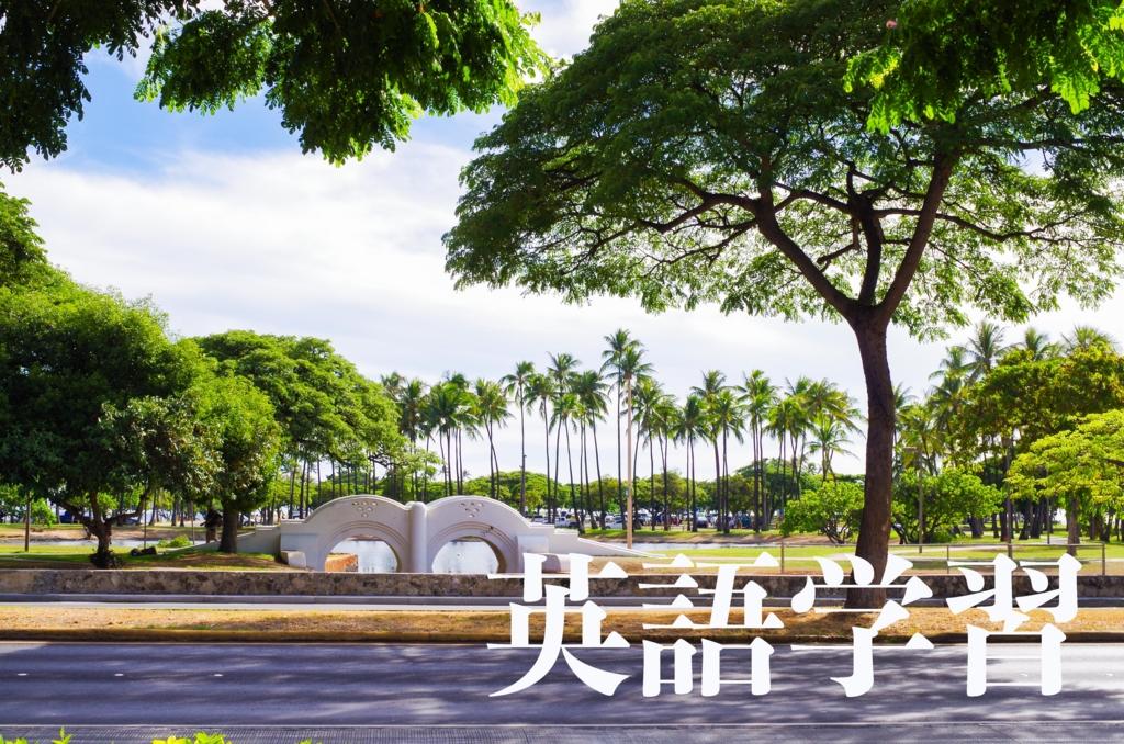 f:id:fujidayo:20170410015747j:plain