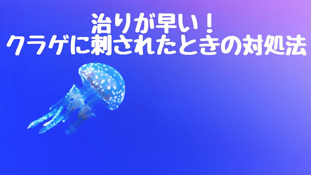 f:id:fujifuji95:20190805223643p:image