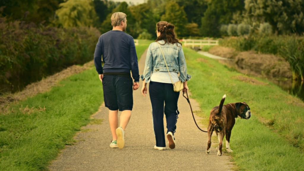 男性と女性が犬の散歩をしている