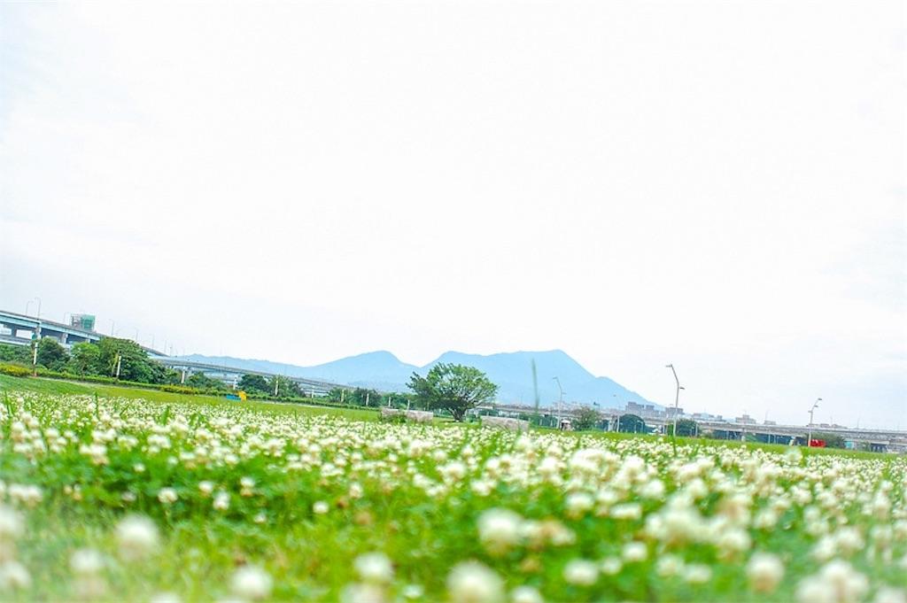 f:id:fujii419:20190222204106j:image
