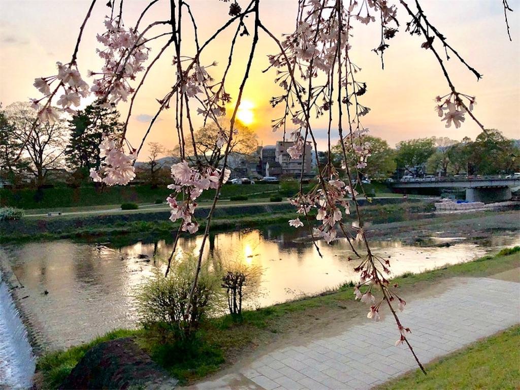 f:id:fujii419:20190305121829j:image