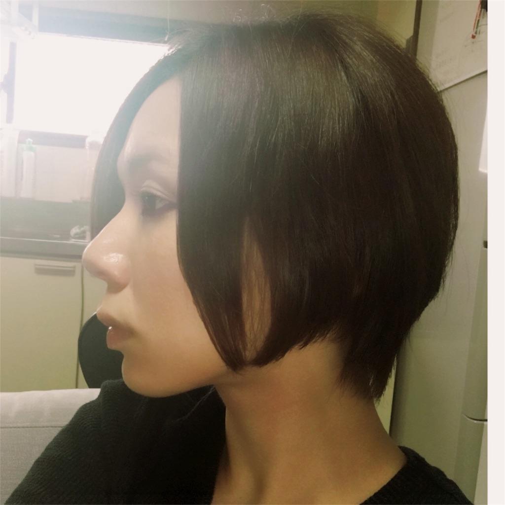 f:id:fujiidesu1013:20170618174918j:image
