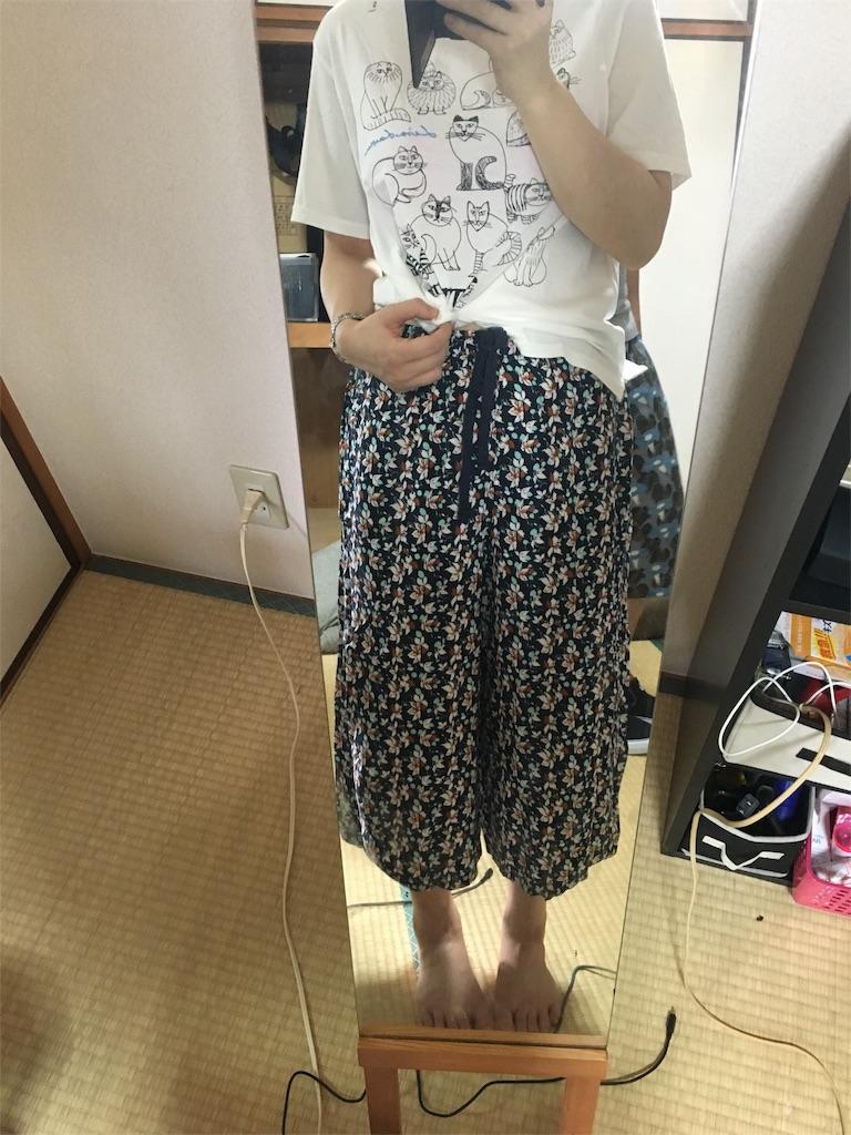f:id:fujiidesu1013:20170701182453j:image