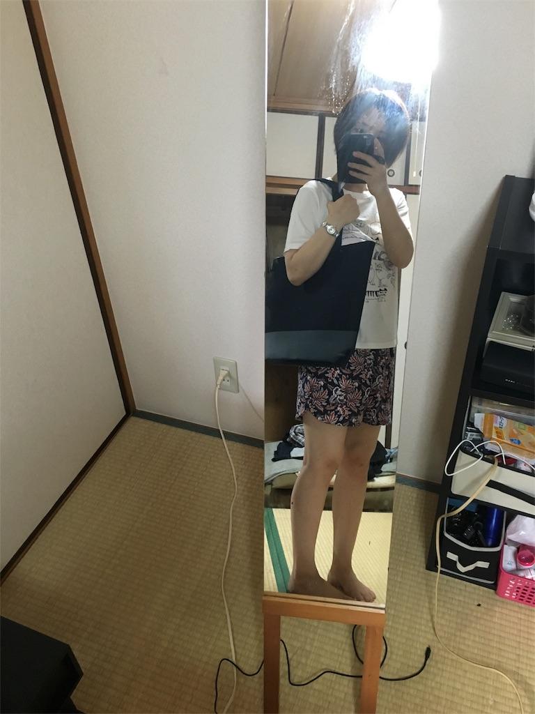 f:id:fujiidesu1013:20170701182556j:image