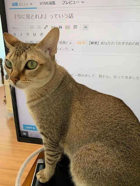 f:id:fujiikazuhisa:20200102110713j:plain