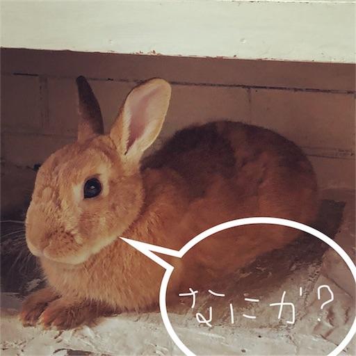 f:id:fujikana:20180730153334j:image