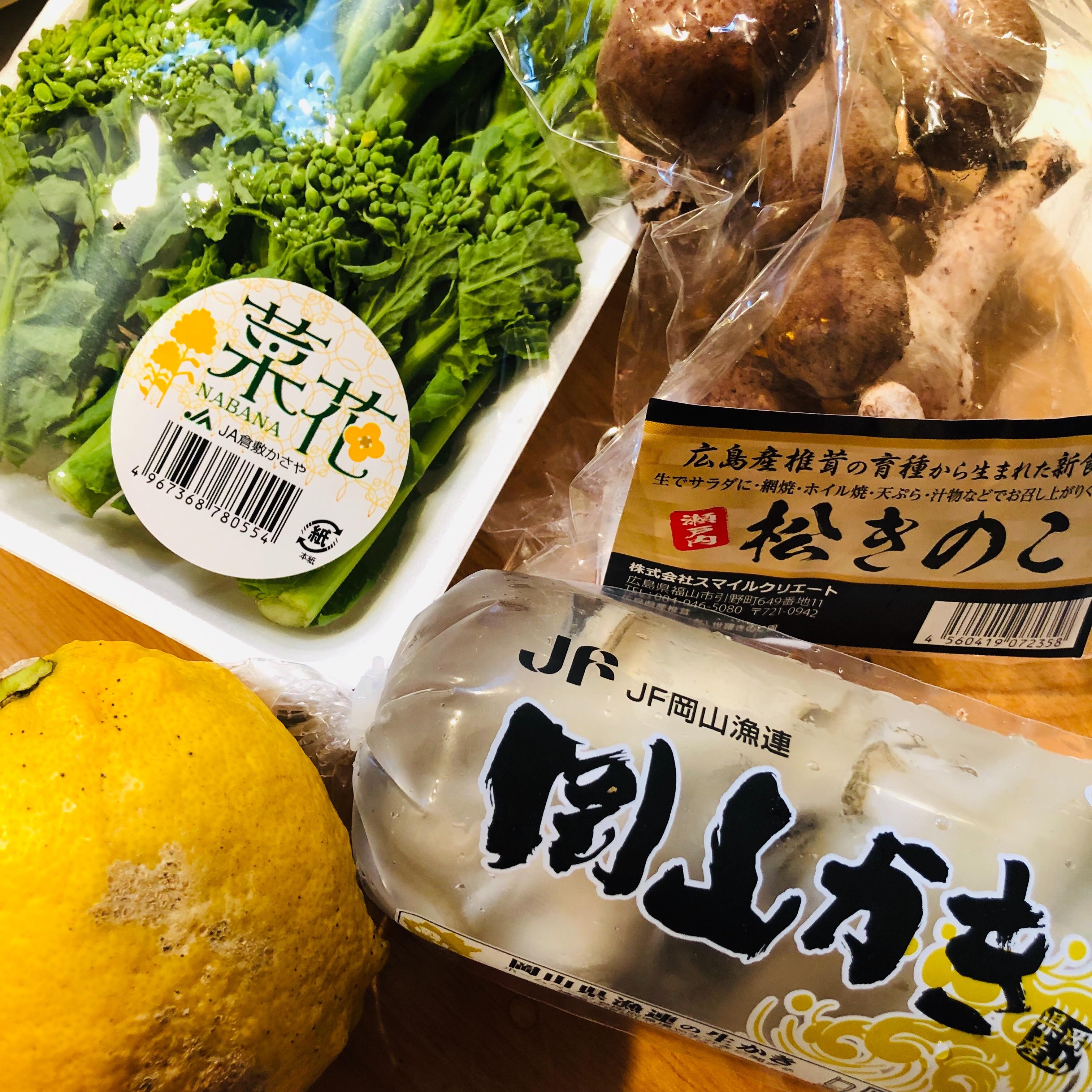f:id:fujikana:20190313094836j:image