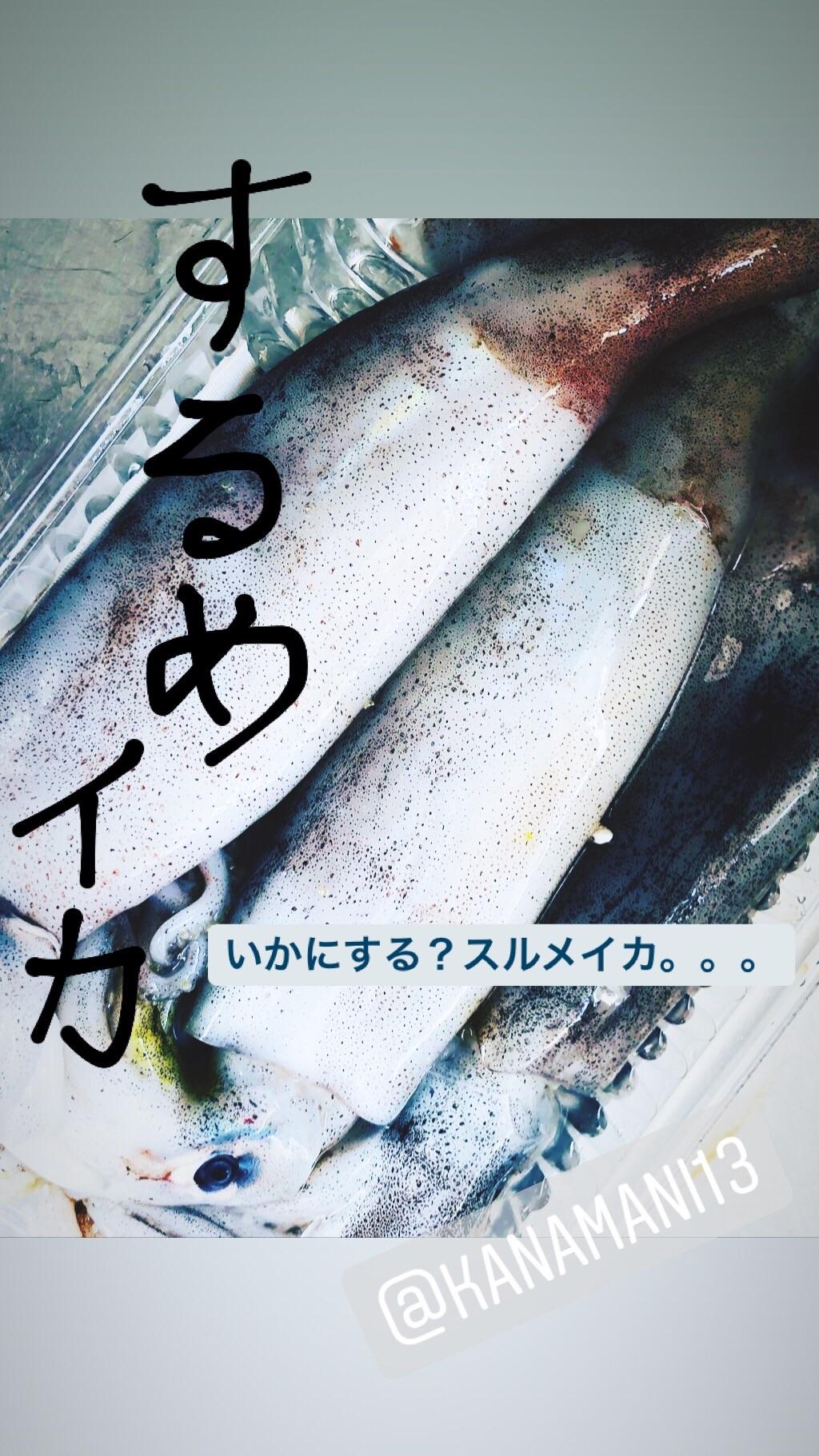 f:id:fujikana:20190527174858j:image