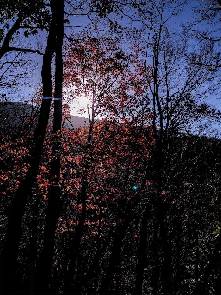 f:id:fujikixblog:20181210082215j:image