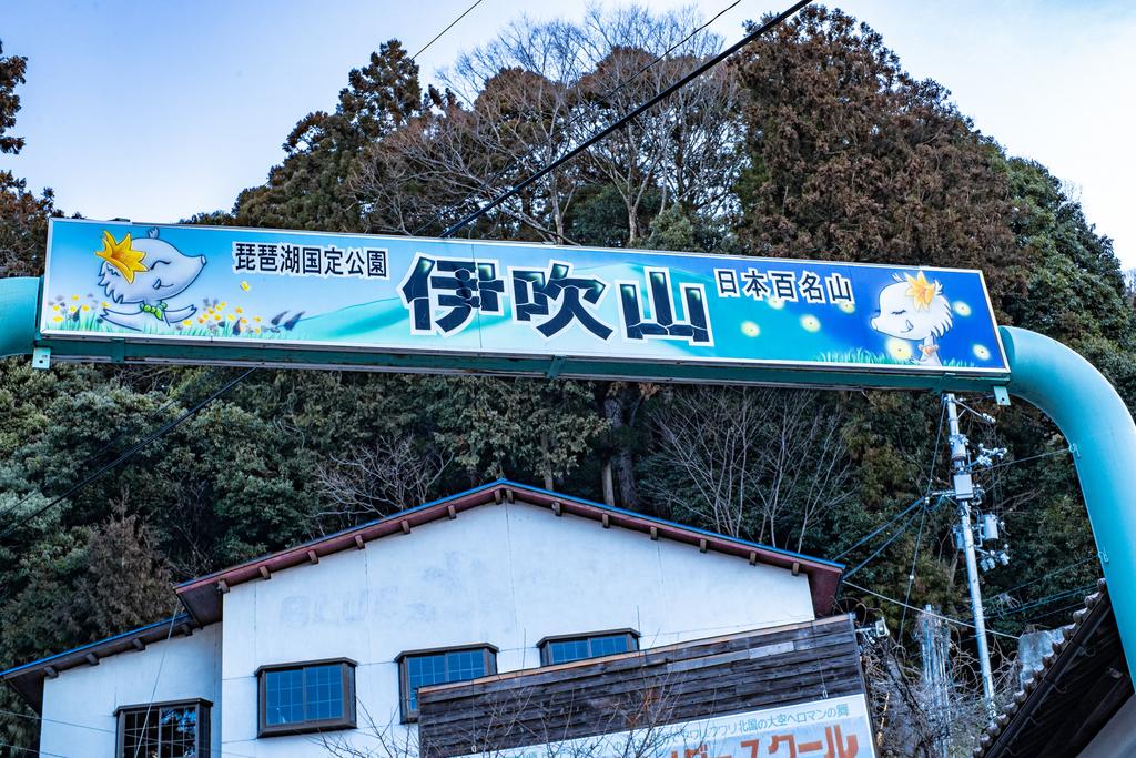 f:id:fujikixblog:20190221162307j:plain
