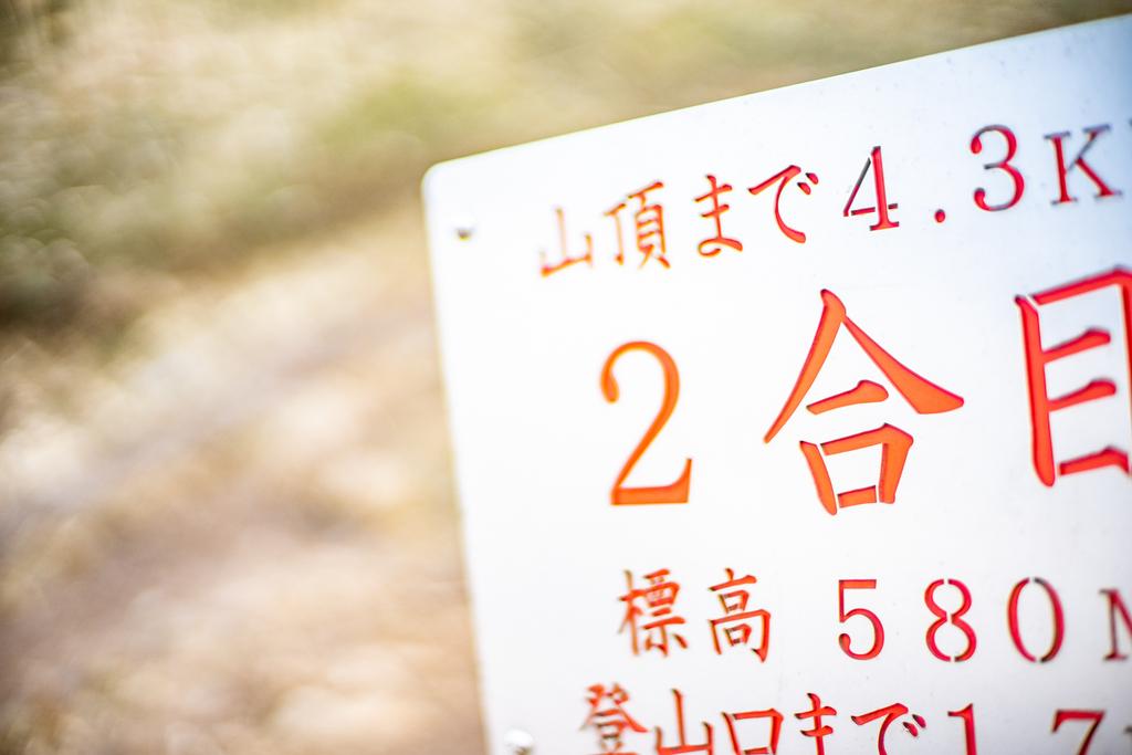 f:id:fujikixblog:20190221162841j:plain