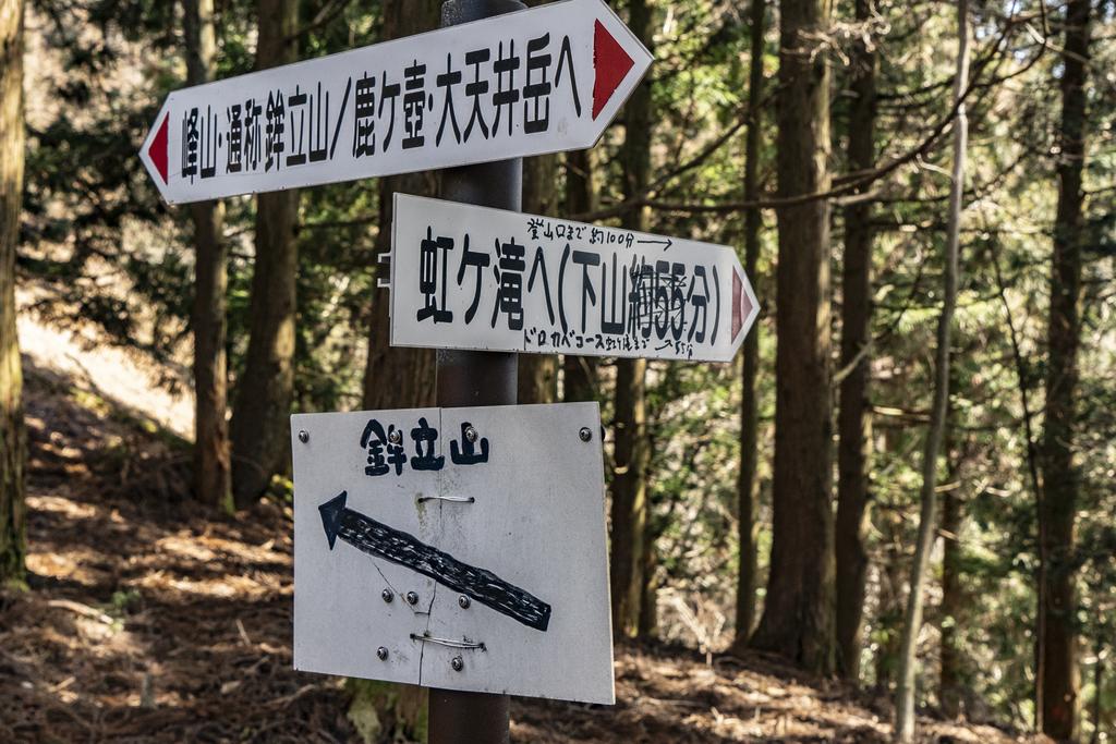 f:id:fujikixblog:20190311174329j:plain