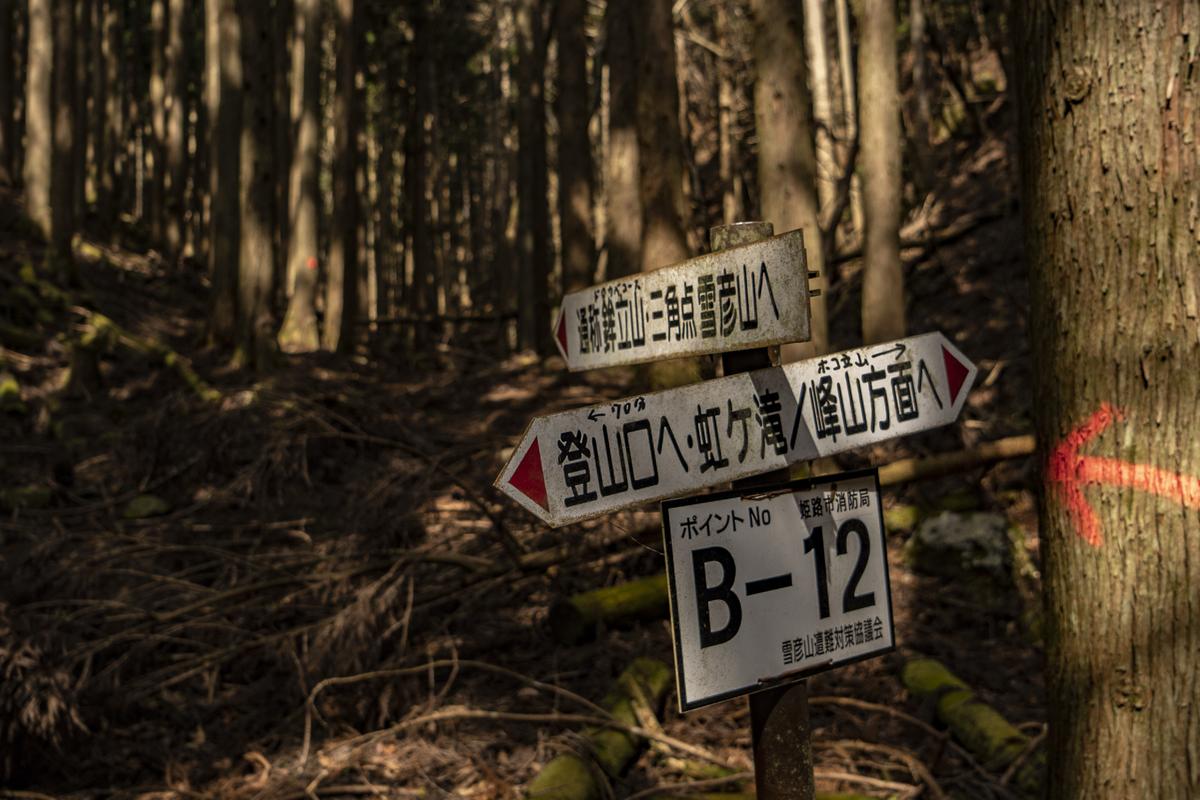 f:id:fujikixblog:20190315094326j:plain
