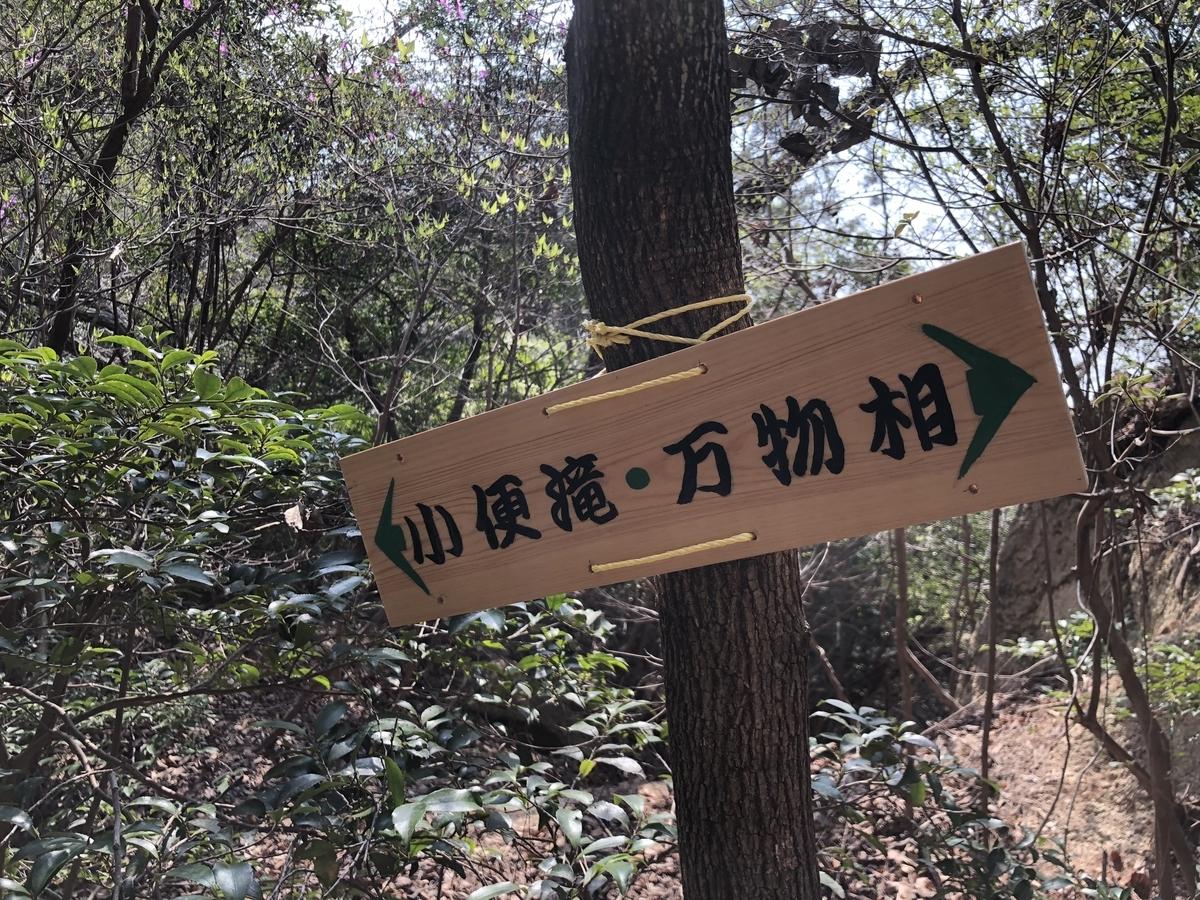 f:id:fujikixblog:20190408110755j:plain